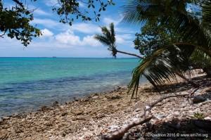 DXpedition T2-Tuvalu